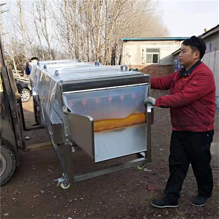 煙臺乳山客戶定制海蠣子清洗機發貨-牡蠣生蠔清洗機生產廠家