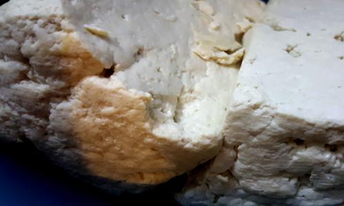 生物可降解包材制作原料有哪些?食物性植物原料居多
