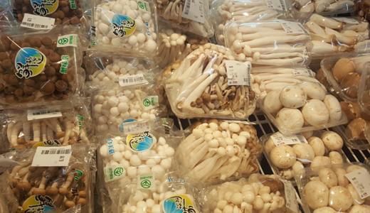 食用菌市场上升 生产加工型冷库建设还需加快