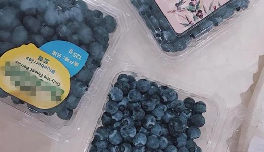 蓝莓成熟 深加工设备推动产业可持续发展