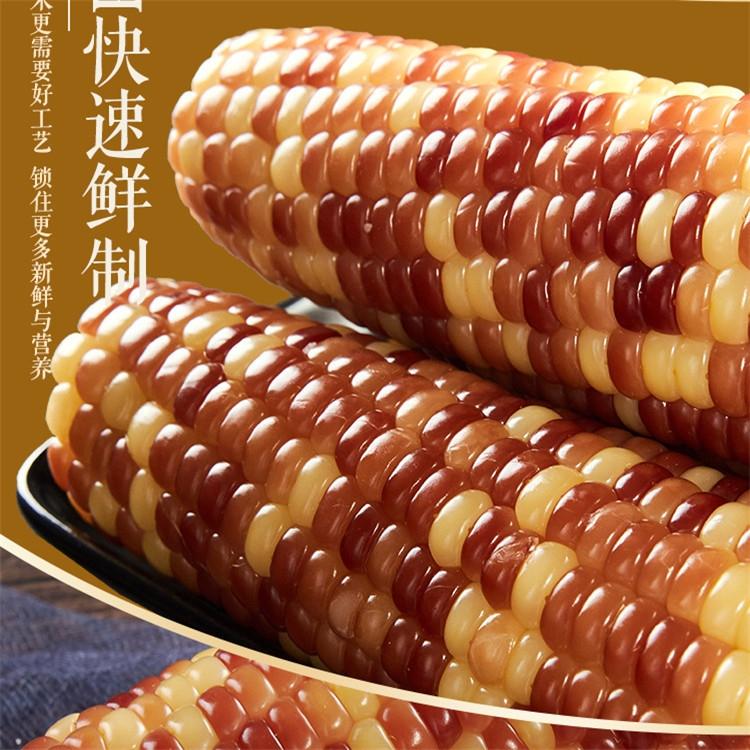 即食玉米跟速凍玉米的區別-鮮玉米加工設備批發廠家
