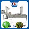 LJ-3000不锈钢全自动蔬菜清洗菜椒气泡清洗机